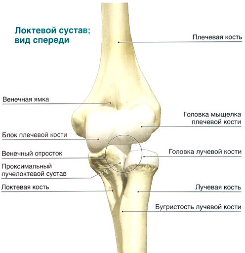 Растяжение в локтевом суставе у детей болит локоть от треннировок как вылечить
