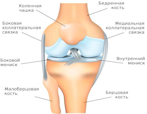 медиальная боковая связка коленного сустава лечение